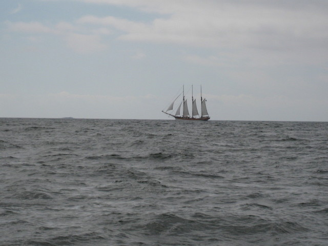 Vähän isompia aluksiakin liikkui purjeilla